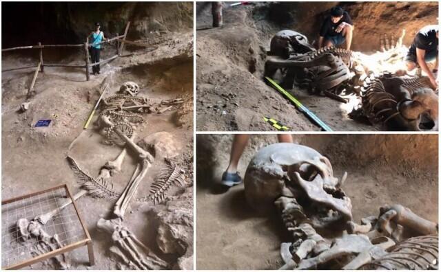 В Таиланде показали уникальное открытие гигантского скелета