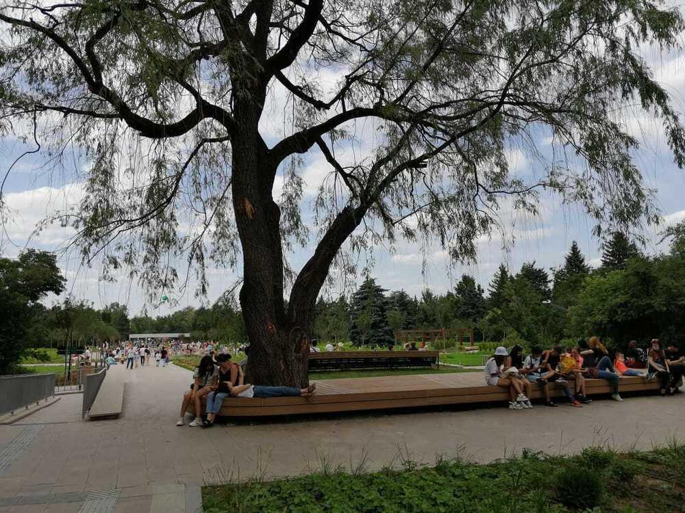 Ботанический сад открылся после реконструкции. Фото: Светлана Шарипова, Kazakhstan Today