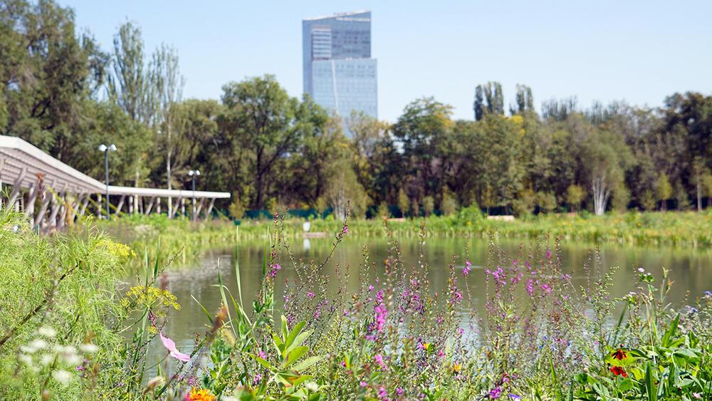 Алмаатинский ботанический сад. Реконструкция. Фото:Куватов Эрик