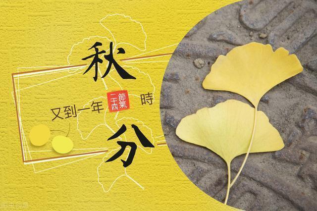 ТРАДИЦИОННАЯ КУЛЬТУРА КИТАЯ. 24 сезона традиционного китайского сельскохозяйственного календаря. Цюфэнь - Осеннее равноденствие