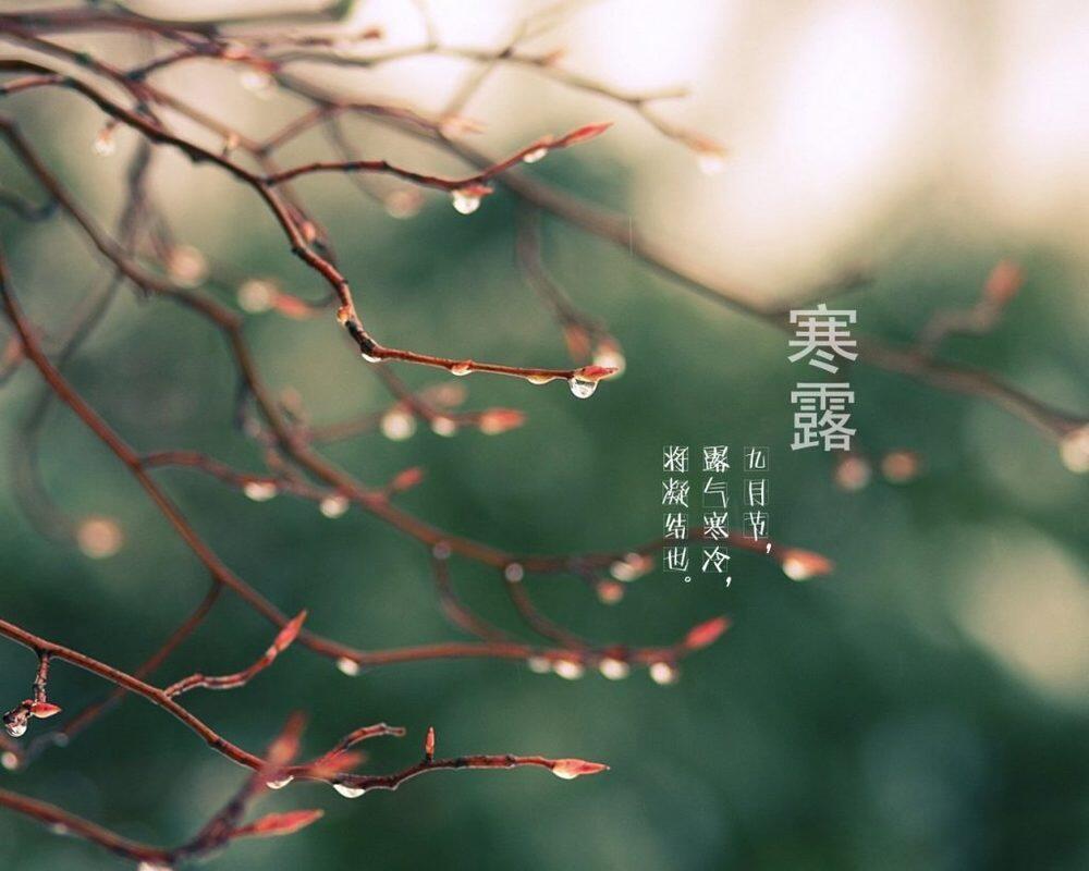 ТРАДИЦИОННАЯ КУЛЬТУРА КИТАЯ. 24 сезона традиционного китайского сельскохозяйственного календаря. Ханьлу - Холодные росы